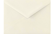 5 1/2 BAR Envelopes
