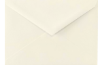 5 BAR Envelopes Natural