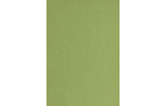 6 x 6 Pockets Middle Layer Card Avocado
