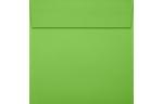 5 x 5 Square Envelopes Limelight