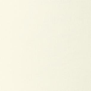 Ivory White Linen 100lb. Linen