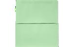 6 3/4 Remittance Envelopes Pastel Green
