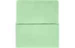 6 1/4 Remittance Envelopes Pastel Green