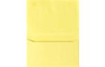 #6 2-Way Envelopes Pastel Canary