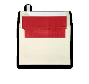 LUX Foil Lined | Envelopes.com