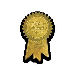 1 1/4 x 2 Embossed Foil Seal Award