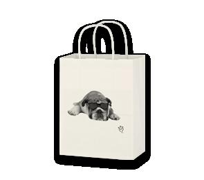 Paper Gift Bags   Envelopes.com